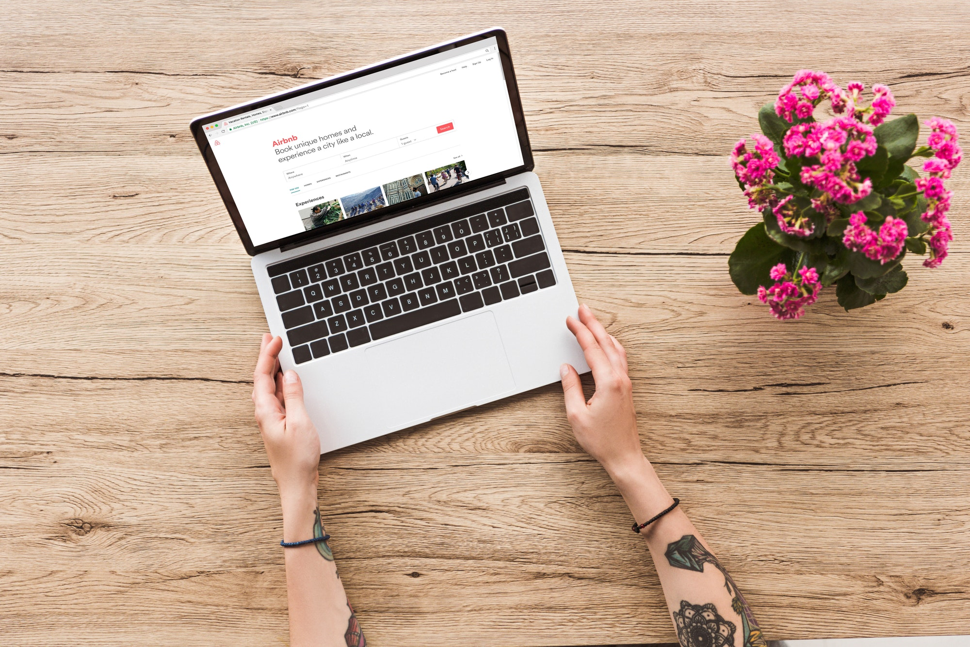 partial view of woman at tabletop with laptop with airbnb website and kalanhoe plant in flowerpot
